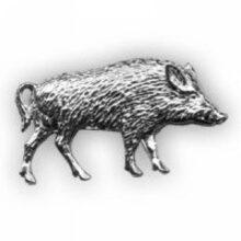 Odznak diviak strieborný – celý