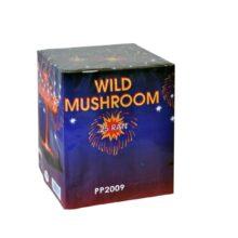 Wild mushroom 25 rán